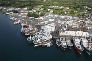 The Castletownbere Fleet