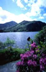 Glanmore Lake